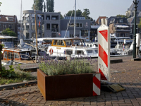 Bloembakken 'aan de wandel' Nieuwe Haven Dordrecht