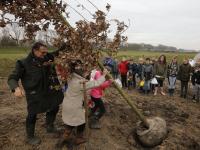 Aanplanten van SOK-boom en andere bomen Nieuwe Dordtse Biesbosch