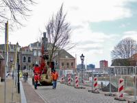 Bomen geplant lange Geldersekade Dordrecht