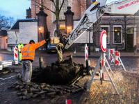 Bomen weggehaald Lange Geldersekade Dordrecht