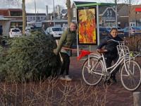 Damplein vol kerstbomen