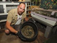 Grote wurgslangen in beslag genomen en opgevangen bij Zorg Zoo Dordrecht