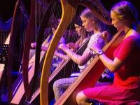 170413 Harpvoorstelling Dromen
