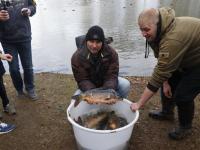 Vissen uitgezet in meerdere sloten Dordrecht