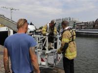 Hondje gered uit water