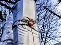 Kastanjebomen ingepakt