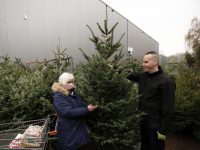 Kerstbomen verkopen Tuinwereld Dordrecht