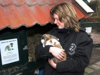 20091102-konijn-terug-bij-kinderboerderij-capelle-aan-de-ijssel-ad-thymen-stolk-001_resize