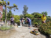 Medewerkers van het Parkhoff zorgen voor een mooie tuin!