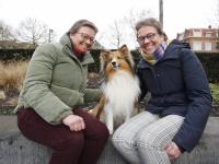Dames met hun Hondje Dordrecht