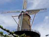 Molen in feeststemming Dordrecht