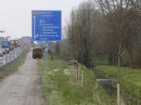 Bomen geplant langs de Randweg N3 Dordrecht