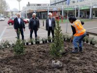 Nieuwe parkeerplaatsen én beplanting op winkelcentrum Crabbehof