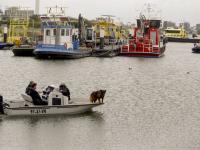 Politie zoekt met hond naar vermiste Dirk Dalebout Mallegat Oost Dordrecht