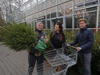 Tijd voor kerstbomen Dordrecht