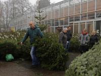 20170212-Op-zoek-een-de-perfecte-kerstboom-Tuinwereld-Dordrecht-Tstolk
