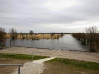 Officiële opening Nieuwe Dordtse Biesbosch
