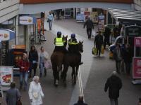 Politiepaarden in actie tijdens 'donkere dagen offensief' WC De Meent Papendrecht