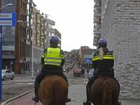 Politiepaarden in actie tijdens \'donkere dagen offensief\' WC De Meent Papendrecht