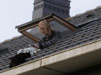 Kitten gered van dak