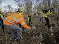 Schooljeugd plant bomen in De Elzen Dordrecht
