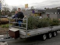 Inzamelen van kerstbomen en vuurwerk