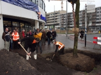 20092002-laatste-boom-geplant-spuiboulevard-dordrecht-ad-thymen-stolk-001_resize