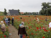 25 jaar vrijwilliger bij de Wereldwinkel Pluktuin Kromme Zandweg Dordrecht