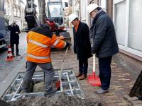 Wethouders planten nieuwe boom Museumstraat Dordrecht